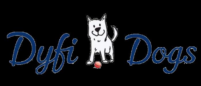 dyfi-dogs-aberdyfi